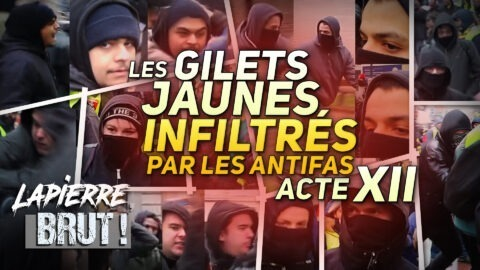AGRESSÉS PAR DES ANTIFAS – Lapierre, Brut !