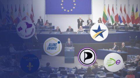 Européennes 2019 : ce qui fait courir les toutes petites listes