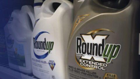 Monsanto a fiché (en secret) des personnalités pour son lobbying
