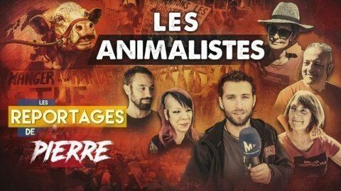 LES ANIMALISTES – Les Reportages de Vincent Lapierre