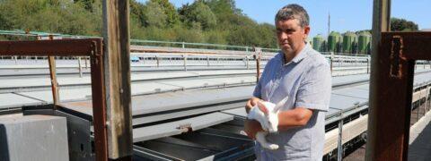 Troupeaux décimés : des éleveurs accusent les antennes-relais 4G
