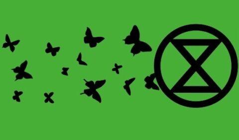 Certains membres d'Extinction Rebellion seraient payés pour leurs actions