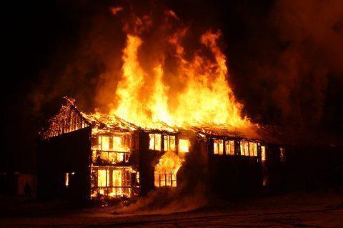 Australie : l'équivalent de deux fois la Bretagne en feu, 500 millions d'animaux tués…