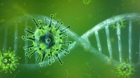 Le Coronavirus n'est pas la cause de la crise financière mais son élément détonateur