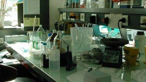 Covid-19 : le seul fabricant français de chloroquine est en redressement judiciaire