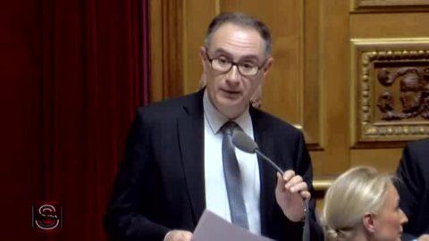 49-3: un sénateur « extrêmentdéçu» quitte LREM