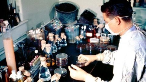 Coronavirus : des mathématiciens ont une solution pour tester efficacement la population