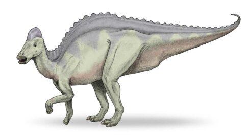 Première Historique, des paléontologues pourraient avoir découvert de l'ADN de dinosaure!