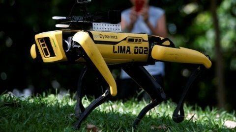 Bientôt des «chiens-robots» pour faire respecter la distanciation sociale ? C'est en test à Singapour