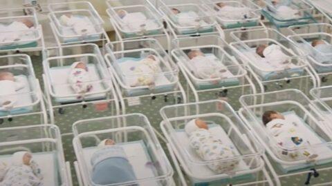 « Les centaines de bébés bloqués en Ukraine montrent l'indécence de la gestation pour autrui »