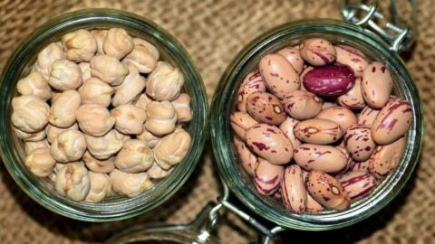 Les semences paysannes, enfin autorisées