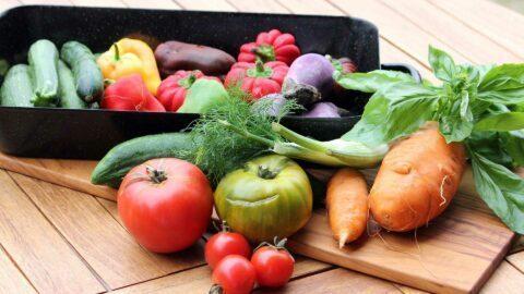 Permettre à chacun de manger à sa faim : l'idée d'une « Sécurité sociale de l'alimentation »